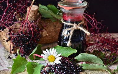 Immune enhancing home- made Elderberry syrup